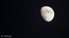 Under the moon (Fastsky) Tags: sky moon black night luna cielo dreams planet nero notte sogni pianeta