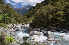 Rob Roy Stream, Mount Aspiring National Park, New Zealand (goneforawander) Tags: new travel camping newzealand wild alps nature landscape outdoors island nationalpark nikon scenery natural pacific hiking south glacier southern zealand alpine backpacking nz otago doc westcoast aotearoa wanaka tramping robroy australasia oceania dayhike mountaspiring matukituki d90 mountaspiringnationalpark goneforawander enzedonline