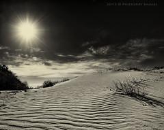 Sun sun sun!! (PhotoArt Images) Tags: sky sun white black hot sunshine mono australia monochromatic heat southaustralia saltcreek sanddunes coorong nikond700 nikon2470mm28 photoartimages