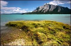 Abraham Lake --  Alberta, Canada (greenthumb_38) Tags: canada reunion rockies canadian alberta 2012 canadianrockies jeffreybass august2012 moseankoreunion
