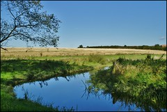 Simple view. (dlanor smada) Tags: uk blue england water chilterns rivers gb aylesbury bucks riverthame ashowoff