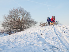 children sledging (dave hanlon) Tags: winter boy holiday snow playing cold girl kids children fun outside outdoors happy vakantie kid l