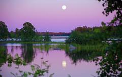 Wonderfull evening (STTH64) Tags: sunset sea summer moon finland evening seaside twilight purple luna fullmoon moonlight