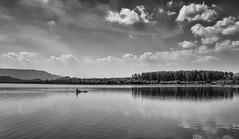 Rowing (Padmanabhan Rangarajan) Tags: tada rural india trees bw