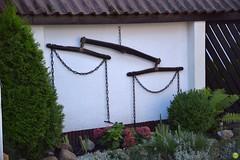 Whippletree (petrOlly) Tags: europe europa poland polska polen tricity tricityarea trjmiasto pomorze sopot fence plants plant