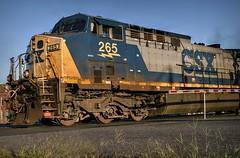 Apparently (builder24car) Tags: railfanning benchingthefreights perspective layingonthegroundlookingup csx csx265 ac44cw sline leecounty sanfordnorthcarolina