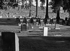 Hell's Angels went... (Chazz5) Tags: sigmadp2merrill graveyard hellsangels monochrome blackandwhite landscape cemetary