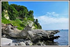 IMG_0374 (Rolf Brecher) Tags: rgen kreidefelsen nationalparkjasmund meer ostsee