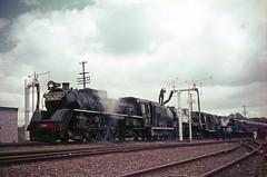 NZR 4-8-2 Ja Triple-Header Mercer Nov 1965 (TJM2012) Tags: newzealandrailways nzr res northbritish 482 ja 1283 1284 1285 1965 mercer