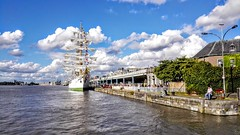 Come on and sail away (wwilliamm) Tags: tallship sail sailing antwerp antwerpen anvers amberes 2016