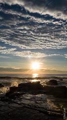 P1140558 (Pursuedbybear) Tags: alexandraheadland sunshinecoast beach sunrise