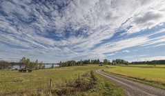 September Landscape (Jyrki Liikanen) Tags: september landscape countryside rurallandscape sandyroad fence cloudysky greenfields calf cow cows lakeview finland northernfinland northernbeauty pasture pasturage grass green meadow