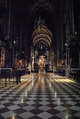Stephansdom (Pavliv Anna) Tags: wien vienna austria travel explore city europe beaty symmetry nature art architecture gothicart gothicstyle lights