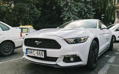 The Devil Himself (Adam Berndt) Tags: ford mustang gt white fehér sportautó autó coupe nikon d5300 front budapest hungary magyarország bme pony