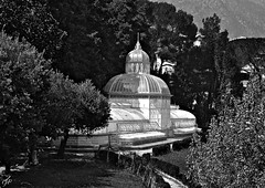 """The Greenhouse"" (giannipaoloziliani) Tags: giannipaoloziliani biancoenero monocromo allaperto blackandwhite monochrome greenhouse serra italy park parco liguria arenzano nature architecture architettura flickr nikon nikoncamera nikond3200 natura trees sky horizon sunlight shadows ombre luce light rays sunrays raggi sole province genova campaign campagna genoa white"