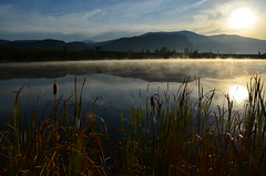 Morning (Alegorya) Tags: morning blue red sky sun lake water cattails steamy vapor