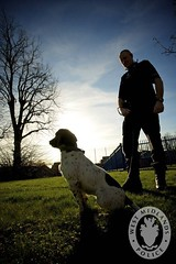 Day 288 - West Midlands Police - Evening Police Dog patrol (West Midlands Police) Tags: dog dogs puppy police cop drugs copper handler officer burglary sniffer policedog policing pcso patrols westmidlandspolice doghandler thelittledoglaughed dogsunit darkernights