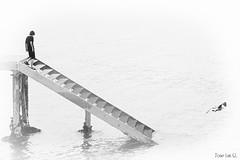 Escalera al Fondo del mar (Jose Luis G.L.) Tags: mar escalera nio gaviota fondo bajando peldaos pueto miedosansebastian