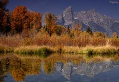 Reflections (P. Oglesby) Tags: autumn mountains reflections grandtetonnp thehighlander godlovesyou schwabacherslanding