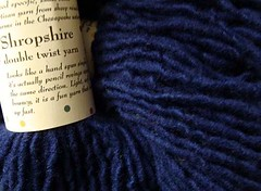 Solitude ShropshireDblTwist - royalblue (NutmegOwl) Tags: solitude shropshire royalblue