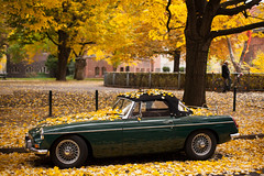 Autumn in Berlin (luce_eee) Tags: autumn man berlin leaves car bike foglie oldstyle herbst autunno 1962 mgb berlino