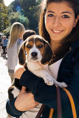 A Girl And Her Beagle (Daniele Nicolucci photography) Tags: italy dog cute beagle dogs girl animal puppy italia contest adorable streetphotography smug pup abruzzo chieti villacomunale casinadeitigli piazzalemazzini
