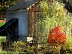 Pennsylvania ~ Bocktown (e r j k . a m e r j k a) Tags: autumn barn rural pennsylvania beaver independence aliquippa bocktown pa151 erjkprunczyk