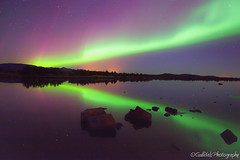 Northern Light Party - Iceland. (Gulli Vals) Tags: park autumn tree green water stone reflections stars iceland purple national aurora northernlights borealis montains