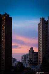 Vista da janela de casa :) (Pedro Lemoine) Tags: pink blue azul skyline canon buildings eos is purple rosa cu pedro ii usm corderosa prdios roxo 70200mm lemoine f28l rosachoque 60d
