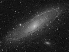 M31 Andromeda Galaxy H-Alpha (Terry Hancock www.downunderobservatory.com) Tags: camera sky monochrome night stars photography mono pier back backyard fotografie photos thomas space shed science images astro apo m observatory telescope andromeda astrophotography m31 astronomy imaging ccd universe ngc224 cosmos paramount luminance lodestar teleskop astronomie byo refractor deepsky f55 halpha narrowband astrograph autoguider starlightxpress Astrometrydotnet:status=solved Astrometrydotnet:version=14400 tmb92ss mks4000 gt1100s qhy9m Astrometrydotnet:id=alpha20121017837695