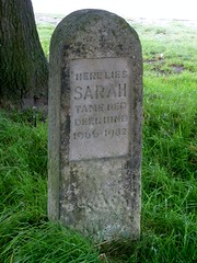 Memorial stone to a deer ... (Charles Wildgoose) Tags: sarah memorial derbyshire peakdistrict chatsworth chatsworthhouse derbyshiredales memorialstone tamedeer sarahthedeer