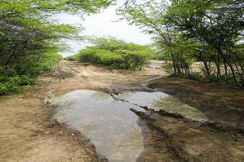 Il percorso completamente  allagato per Uribia