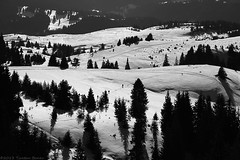 Rhodope Mountains (Tsvetan Banev) Tags: winter mountain snow mountains bulgaria balkans    rhodope  rhodopemountains