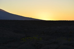Galapagos - Fernandina Island - Sun going down (6) (sweetpeapolly2012) Tags: