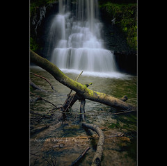 Tiana Falls (Samantha Nicol Art Photography) Tags: trees nature water waterfall moss long exposure slow north tiana ayrshire beith