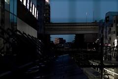 between the lines (Shintaro Masatomi) Tags: