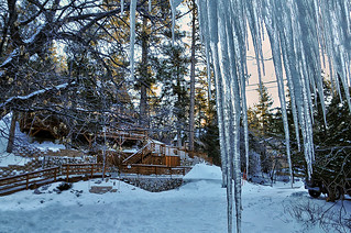 The  icicles.