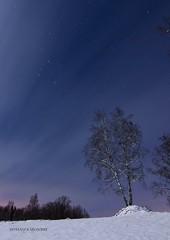 Hgagrde Fotografia nocturna (StefanOlaison) Tags: longexposure winter snow stars vinter sweden nieve estrellas invierno sverige nightphoto sn suecia nssj stjrnor fotografianocturna nattfotografi lngexponering hglandet sandsjfrs