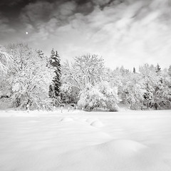 Moon River (c e d e r) Tags: trees sky bw moon white snow black clouds fence landscape rocks sweden posts scandinavia snowscape