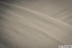 22JAN13: white on white