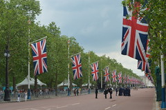 The Flags down the Mall (CoasterMadMatt) Tags: city colour london westminster mall jack flag union palace flags event buckinghampalace buckingham unionjack unionflag themall troopingthecolour trooping cityofwestminster london2016 troopingthecolour2016