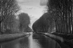 Peaceful scene in monochrome (paul indigo) Tags: travel bridge trees colour reflection reeds landscape canal belgium damme paulindigo