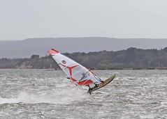 Aug20207a (Mike Millard) Tags: hamworthypark pooleharbour windsurfers