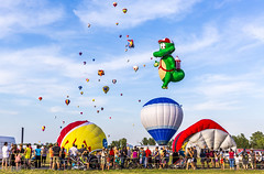 International de montgolfires de Saint-Jean-sur-Richelieu 100 (Eva Blue) Tags: internationaldemontgolfiresdesaintjeansurrichelieu saintjeansurrichelieu ballon balloncanada balloon ballooncanada evablue frog flyinggator hotairballoon hotairballoons montgolfiere montgolfires