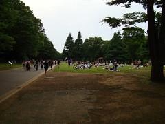 2016-06-04 - Tokyo, Yoyogi-koen - DSC00834 (julien_78) Tags: tokyo yoyogikoen