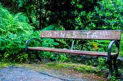 PasVascoAgosto16-0687 (Paola Llinares) Tags: green nature bench banco spain