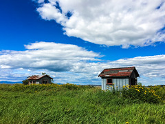 fisherman's cabins (le cabri) Tags: fishermanscabins fisherman cabin blue green bluesky grass whiteclouds shotoniphone iphone two yellowflowers flowers primarycolors red yellow redroof rust old vintage genuine house fisher