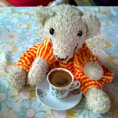 turkish mocca (maramillo) Tags: teddy bear orsacchiotto cup coffee tcf toy cy