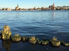 Stadt am Wasser (dirklie65) Tags: sommer summer buhnen mvp warnow flus wasser city hansestadt mecklenburg rostock