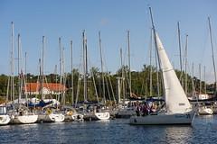 _VWO2684 (Expressklubben Rogaland) Tags: express nmexpress seiling stavangerseilforening